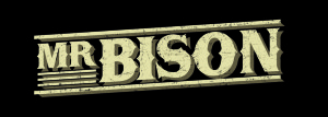 MR BISON LOGO